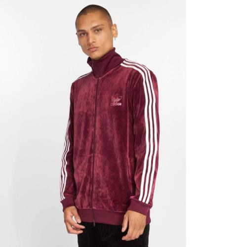 Gent Trainingsanzug Adidas