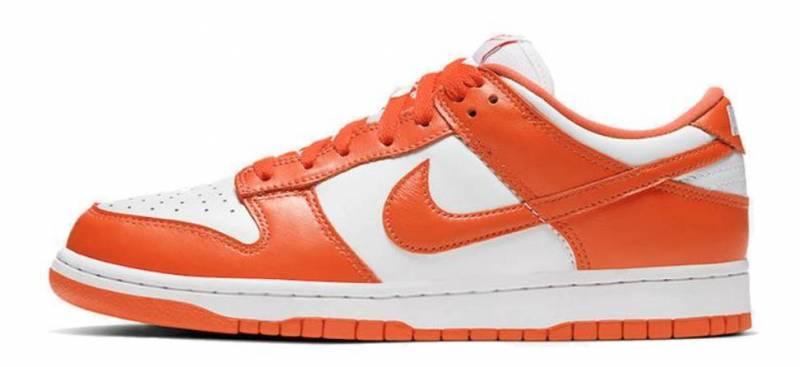 Dardan Nike Sneakers